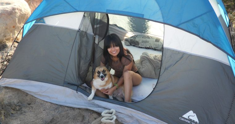 Science Explains How Camping For A Week Can Largely Change Your Productivity