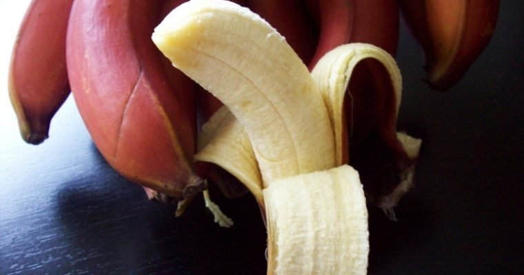 13 Amazing Health Benefits Of Red Banana (Better Than Yellow Banana!)